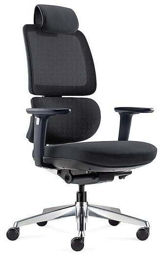 ALFA Furnishing Executive Chair Computer Chair with Lumbar Support and Adjustable 3D Armrests