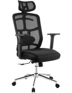 TOPSKY Mesh Best Office Chair for Lower Back
